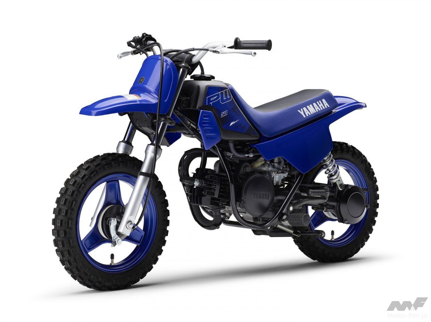 ヤマハ PW50ディープパープリッシュブルーソリッド E(ブルー)