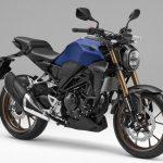 「バイク初心者にオススメの250cc|アンケート調査結果:1位CB250R、2位ニンジャ250。その理由は?」の11枚目の画像ギャラリーへのリンク