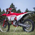 「【GASGAS・EC250F】250ccじゃないでしょ!? と感じるほどの戦闘力。なのに乗りやすい!|最新エンデューロ」の19枚目の画像ギャラリーへのリンク