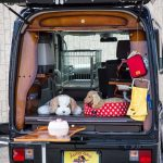 ペットが一緒でも快適に過ごせる空間を追求! 大切な家族と過ごす充実装備の軽キャンコンプリート! スズキ・エブリイ ライトキャンパースタイル2021 -